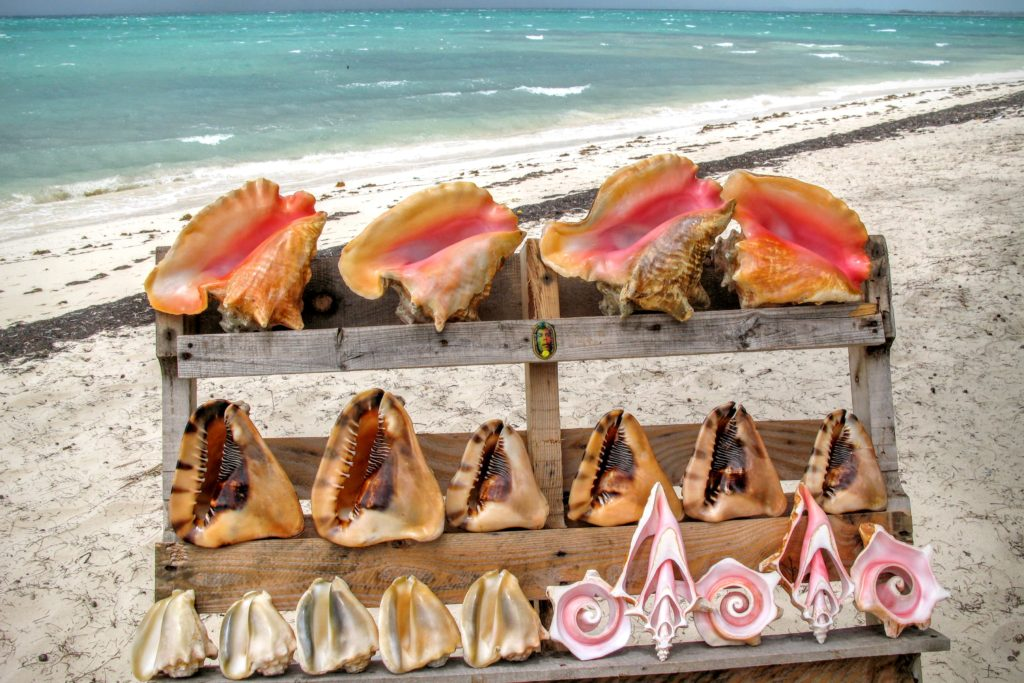 Turks and Caicos food festival