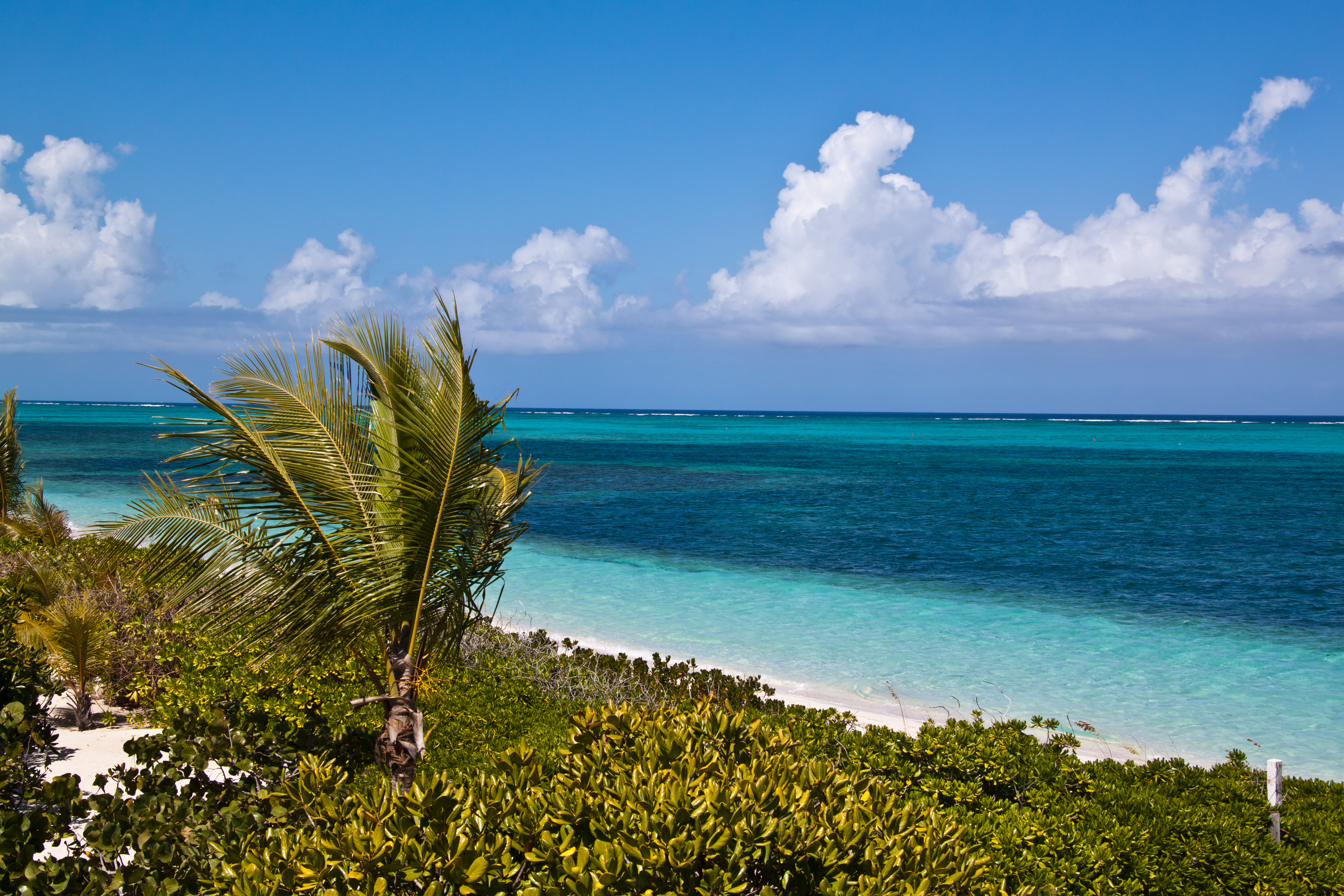 smith reef providenciales