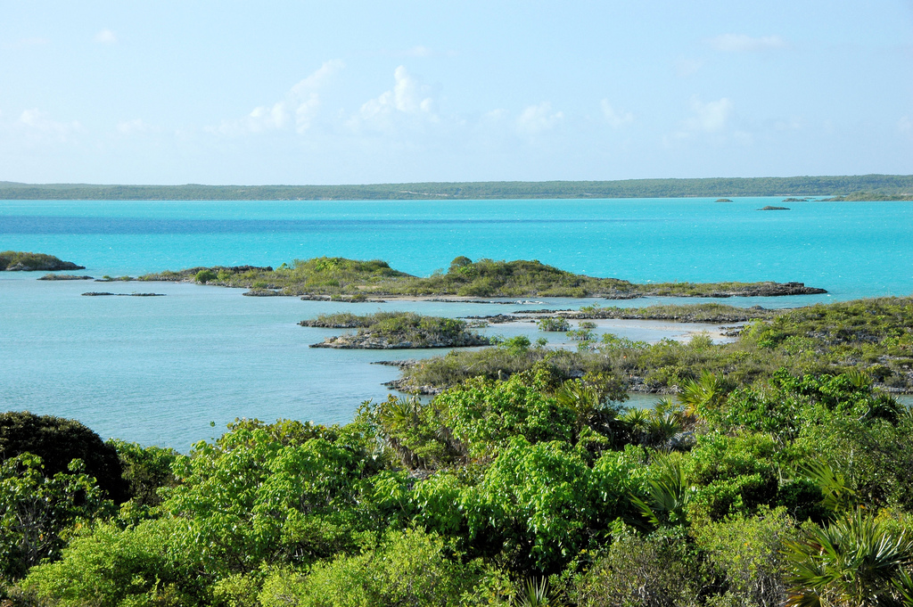 day trip in turks and caicos